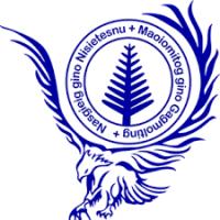 UNSI Logo
